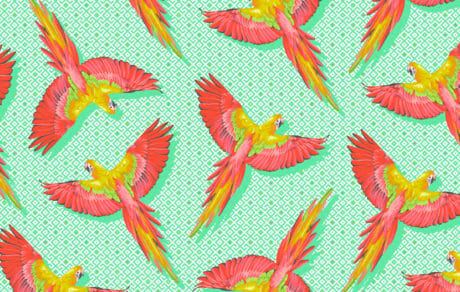PWTP170 Macaw ya Later Mango